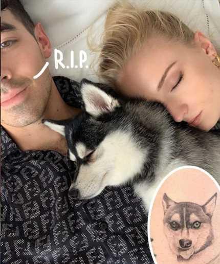 Joe Jonas & Sophie Turner Get Matching Tattoos In Honor Of Their Beloved Dog Waldo