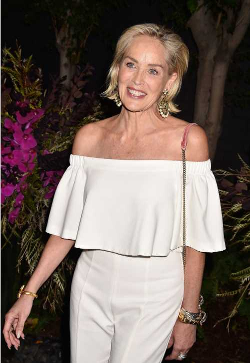 Sharon Stone: 'Princess Diana & I were so famous – and she died and I had a stroke'