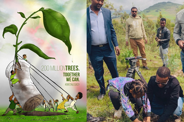 Ethiopians Planted 353 Million Trees In Just 12 Hours, Setting A New World Record