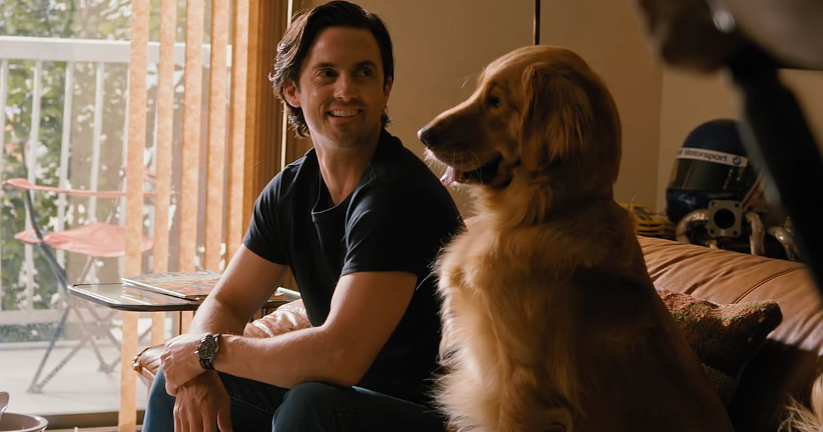 Exclusive: Milo Ventimiglia Plays With a Seriously Cute Dog in The Art of Racing in the Rain Footage