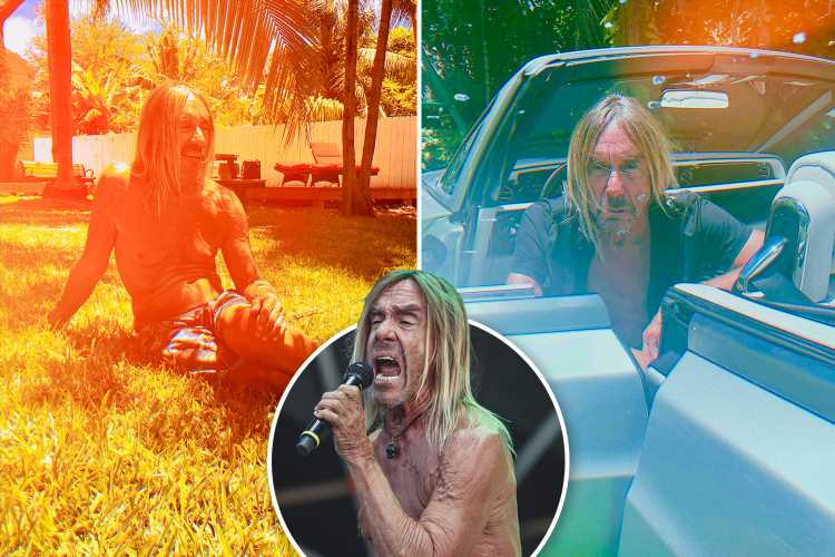 Iggy Pop on those outrageous stage antics and crazy,drug-fuelled youth… 'it's just an image' – The Sun