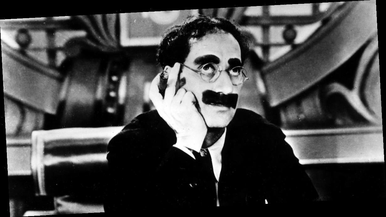 Cat that looks like Groucho Marx is looking for a loving home