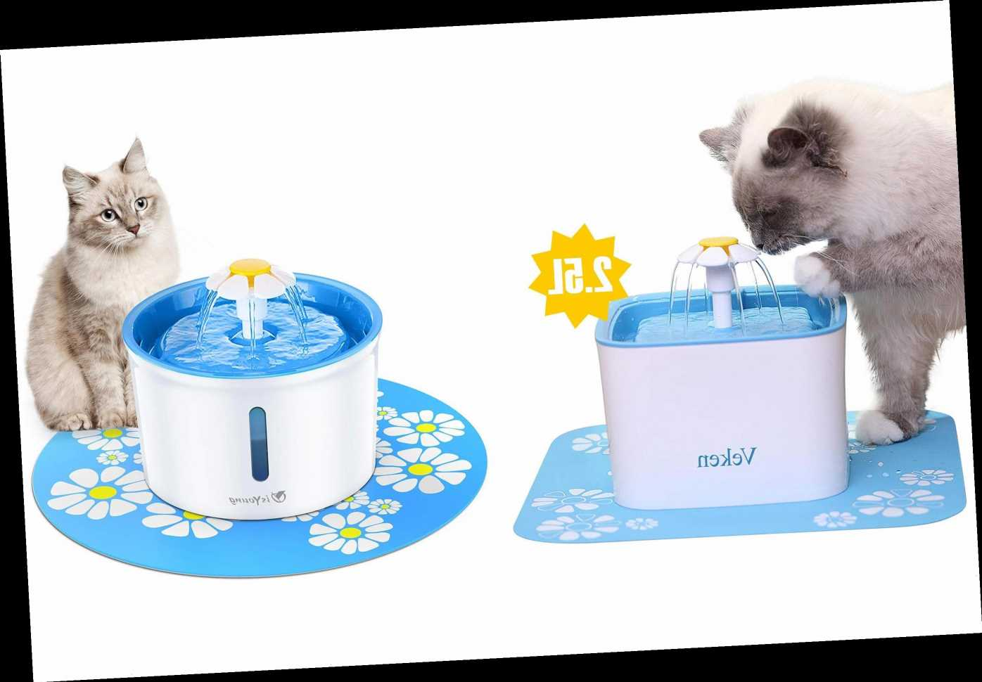 We Tracked Down Those Flower Cat Water Fountains All Over Instagram — and Found Amazon's Best Seller