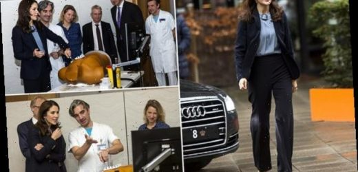 Princess Mary of Denmark tries her hand at heart surgery training