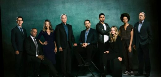 'NCIS' Fans Say This Character Needs to Check His Ego at the Door