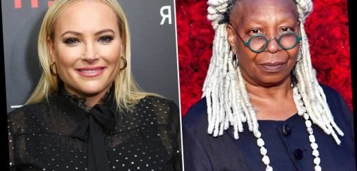 Whoopi Goldberg Cuts Off Meghan McCain on The View: 'Girl, Please Stop Talking!'