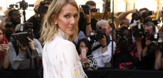 Celine Dion Honors Late Husband in Touching Birthday Tribute for Son René-Charles