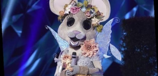 The Masked Singer: New Clues About Mouse, Banana, Taco, Frog and More