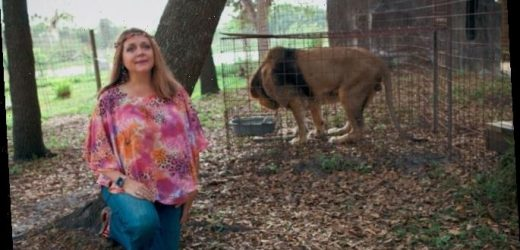 'Tiger King': Did Carole Baskin Kill Her Husband?