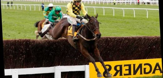 Cheltenham Festival tips: Gold Cup trends – we help you find the winner of the race live on ITV at 3.30pm on Friday