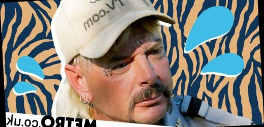 Buy this new Joe Exotic Tiger King sex toy to get even deeper into the weirdness
