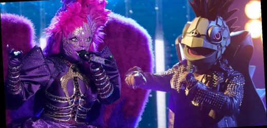 Twitter Can't Handle Latest Masked Singer Celebrity Reveal — Plus, Who Never Sang Before This Show?