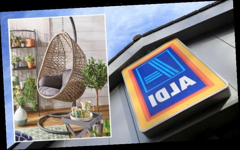 Aldi special buys: The FIVE best buys this week – including Aldi's famous egg chair