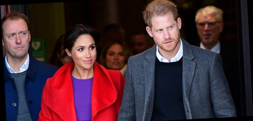 Meghan Markle and Prince Harry Have Hired a £7,000 Per Day Security Team
