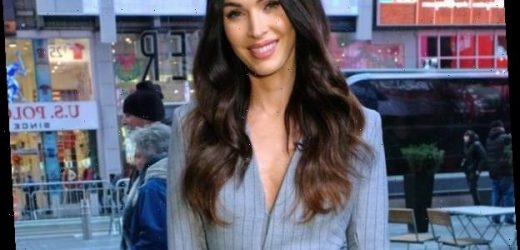 Megan Fox Proudly Reveals Her & Brian Austin Green's Family Crest