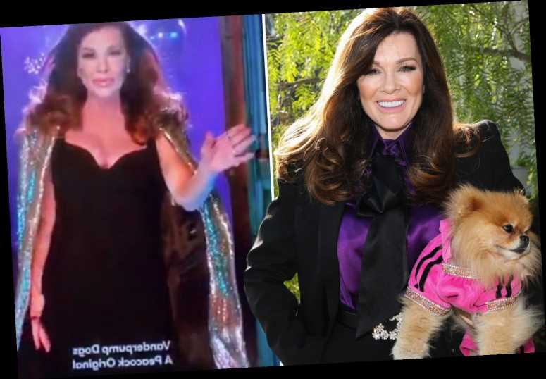 Lisa Vanderpump appears to score spinoff show Vanderpump Dogs about pet rescue organization – The Sun