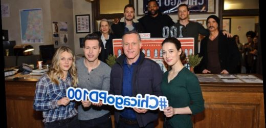 'Chicago P.D.' Fans Prove It's the Favorite of 'One Chicago'