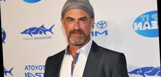 Who is Christopher Meloni's wife?