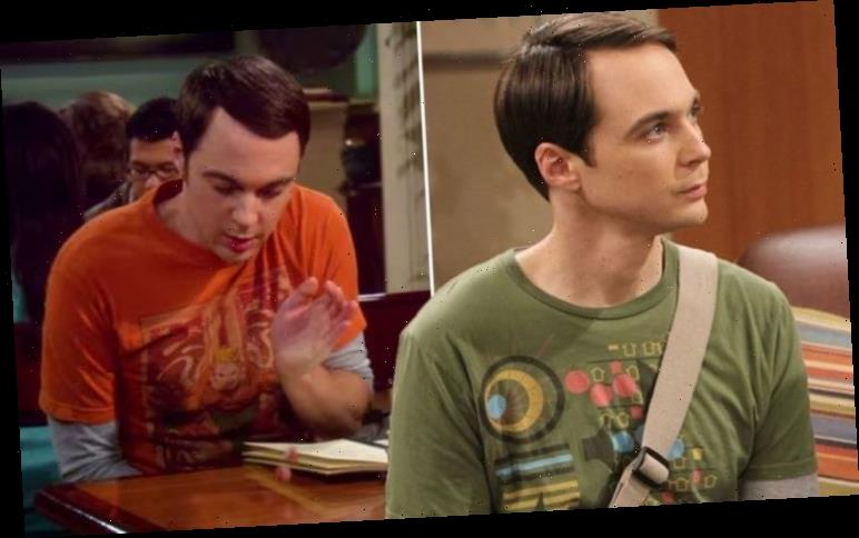 Big Bang Theory plot hole: Fans uncover error in Sheldon's dice-throwing decision-making