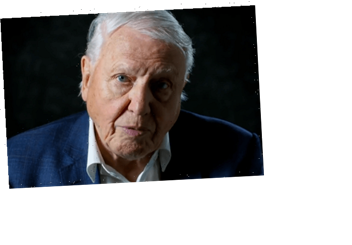Netflix drops harrowing trailer for new David Attenborough documentary Life On Our Planet warning of mass extinctions