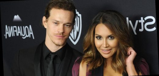 Naya Rivera's ex Ryan Dorsey shares adorable update on son Josey with new look
