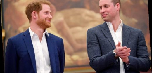 Prince William Refused To Attend Lunch With Prince Harry After Megxit, New Book Claims