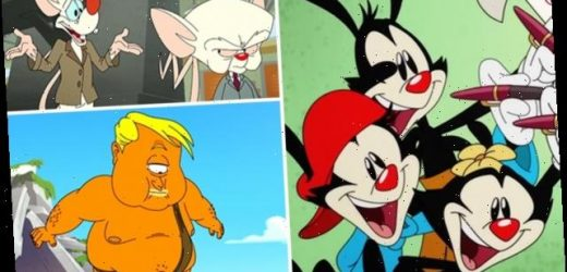 Animaniacs Reboot Trailer Offers First Look at Pinky and the Brain's Return