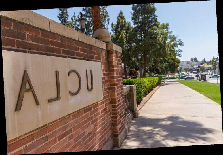 Freshman at UCLA Dies After Fall from Apartment Building Roof: Reports