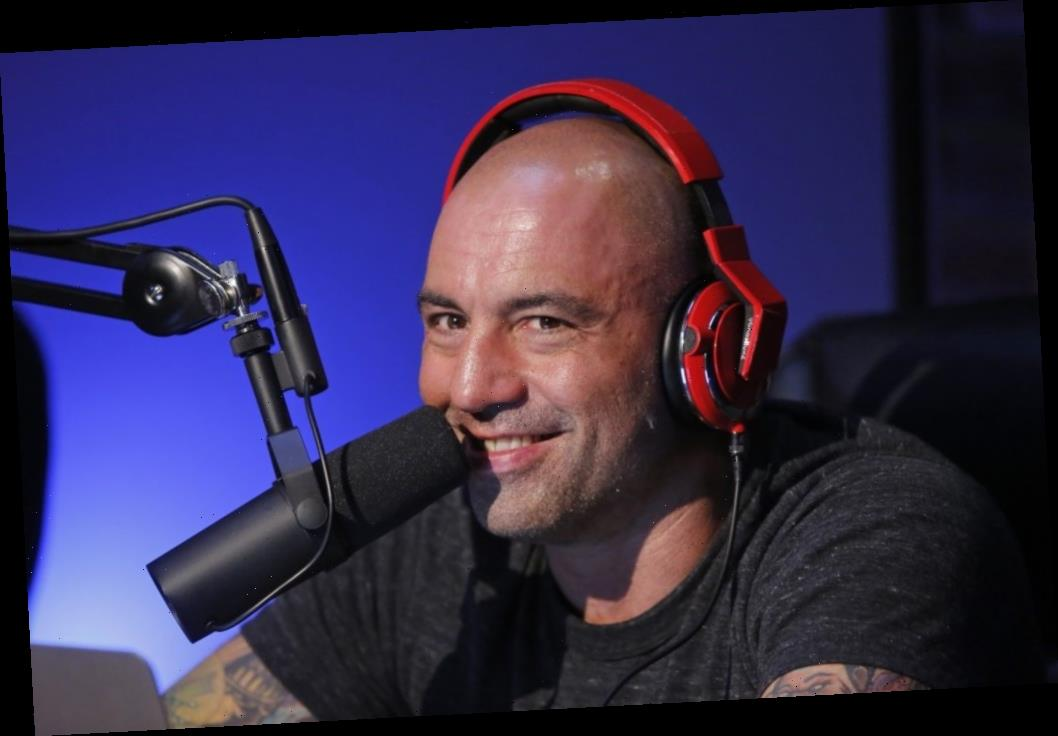 Joe Rogan Says His Kids Ruined Porn and Strip Clubs for Him