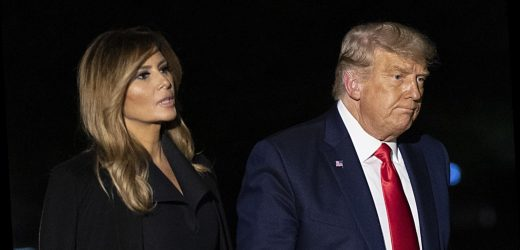 What really happens if Melania and Donald Trump get divorced