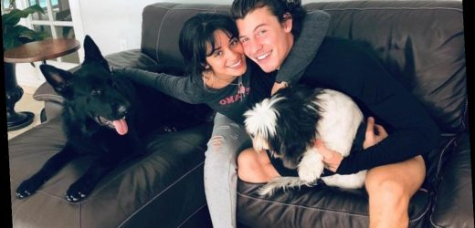 Camila Cabello Gets Honest About Relationship With Shawn Mendes