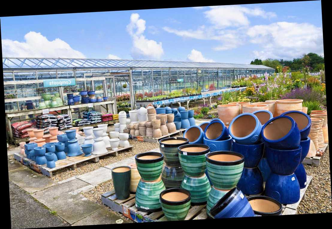 Are garden centres open in Tier 4 in England? New rules explained