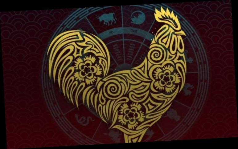 Rooster 2021 zodiac horoscope: What your Chinese zodiac sign means for you this year