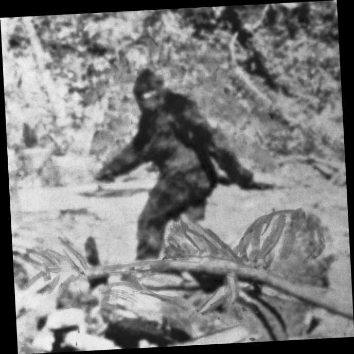 Major New Legislation Calls for Bigfoot Hunting Season
