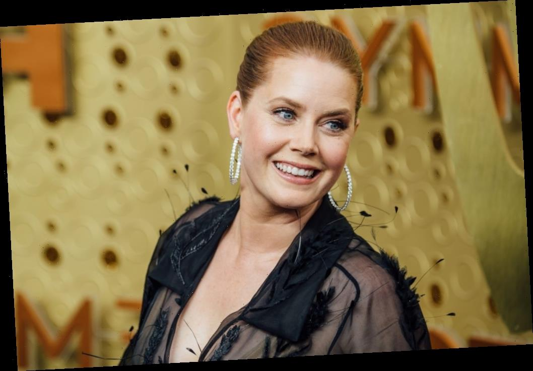 'The Office': When Did Amy Adams First Appear in the Series and Who Did She Play?