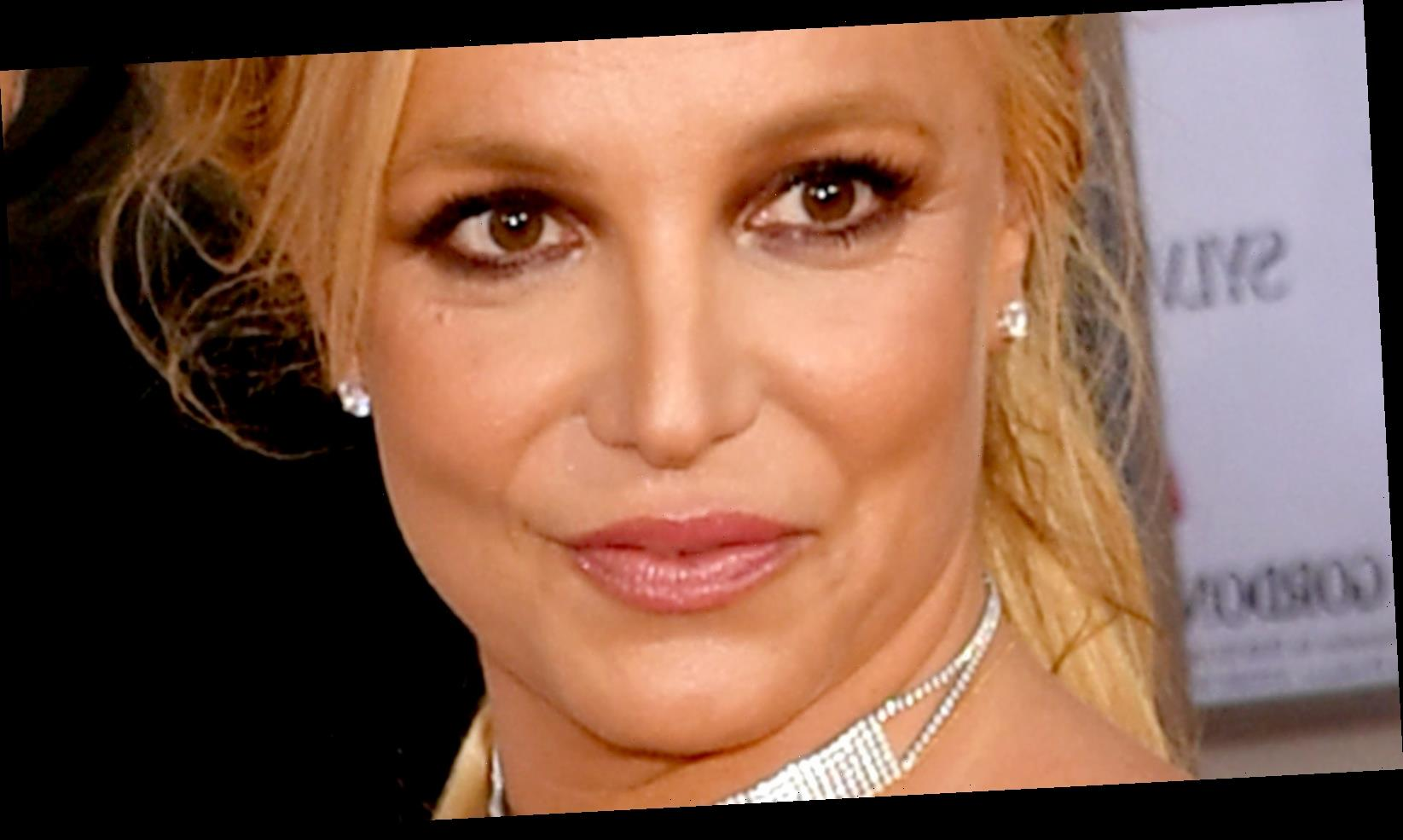 The Reason Fans Think Britney Spears Was Behind Framing Britney Spears