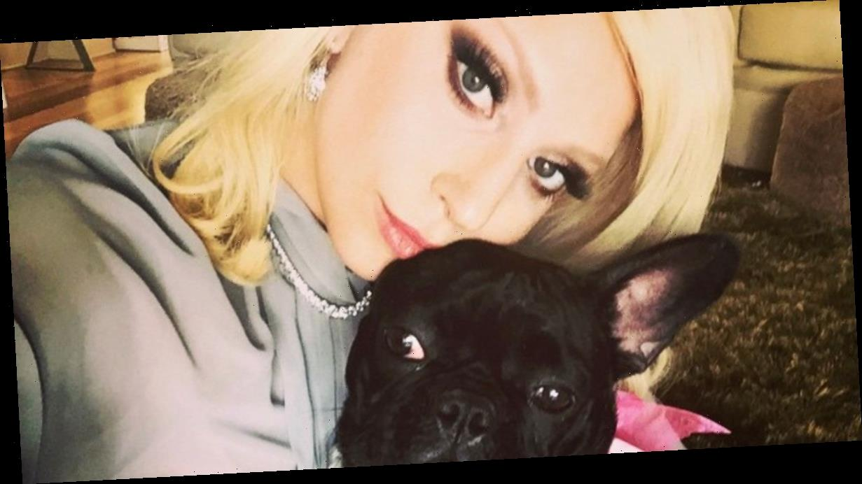 Lady Gaga's dogwalker Ryan Fischer speaks out days after horrific shooting