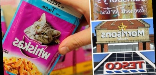 Tesco, Sainsbury's, Morrisons and Waitrose warn shoppers about national pet food shortage