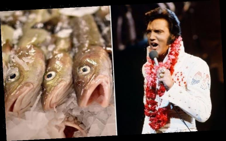 Elvis Presley's Graceland fish ban: The King's family on how he couldn't stand seafood