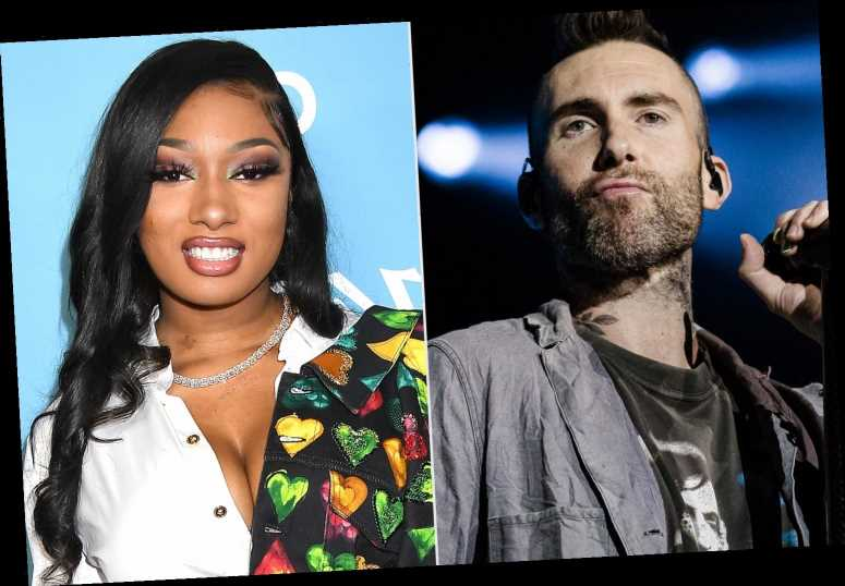 Megan Thee Stallion Teams with Maroon 5 on Band's New Single 'Beautiful Mistakes': 'Run It Up'