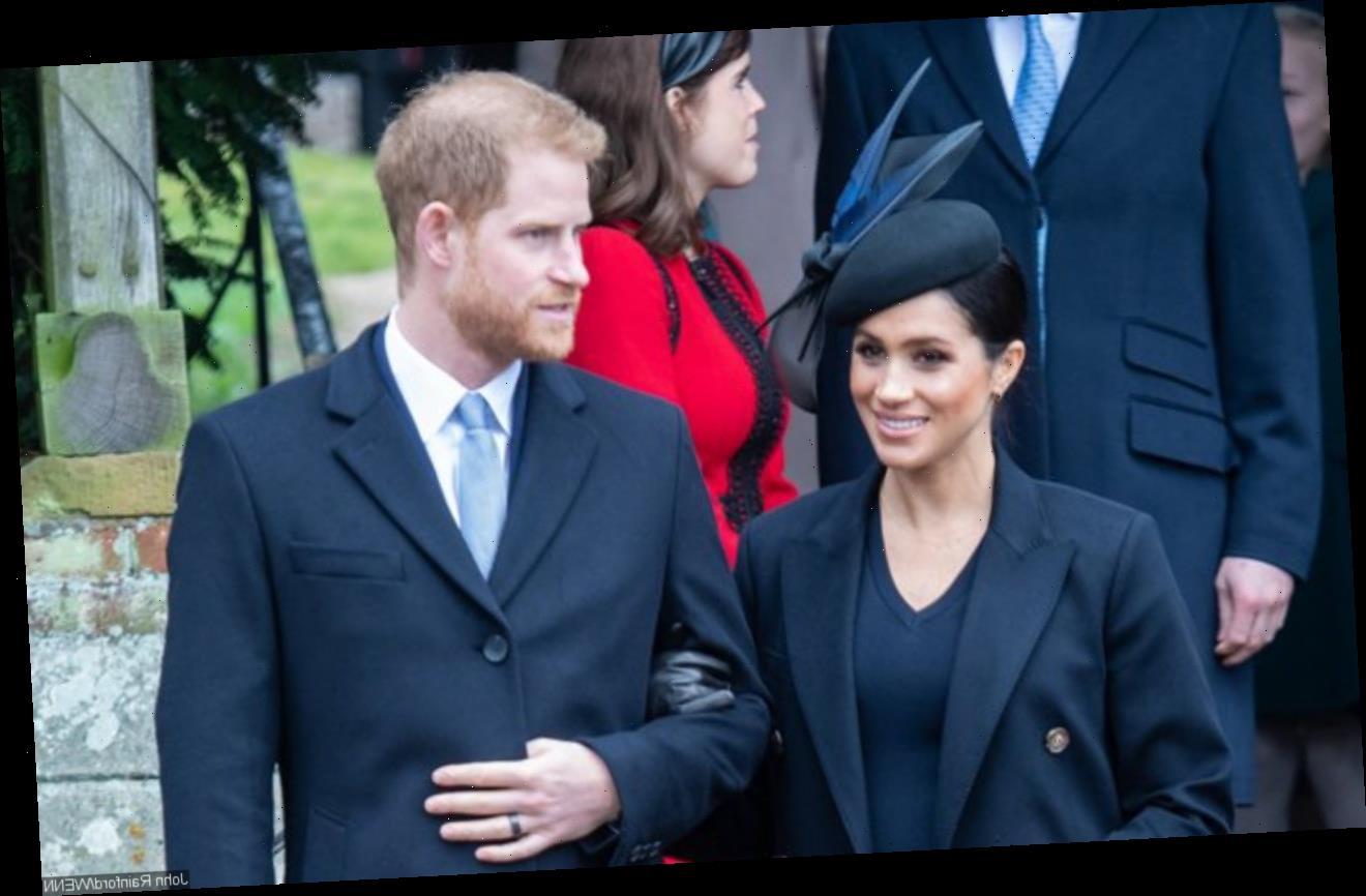 Royal Photographer Blames Meghan Markle for Prince Harry's Anger to Media
