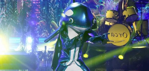Orca on 'The Masked Singer' Is Fully [SPOILER], Fight Me