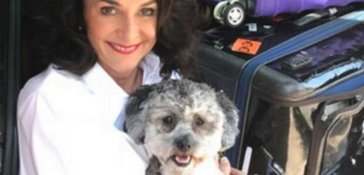 Strictly's Shirley Ballas says dog helped her cope with Covid and father's death