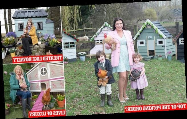 Have these women over egged it by giving hens their very own home?