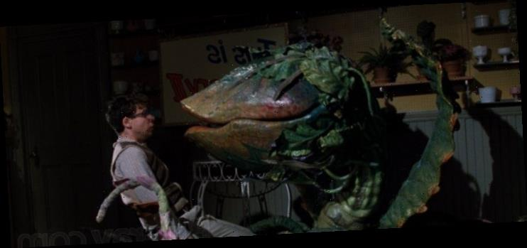 The Quarantine Stream: 'Little Shop of Horrors' is Surprisingly Sweet for a Cult Musical About a Man-Eating Plant