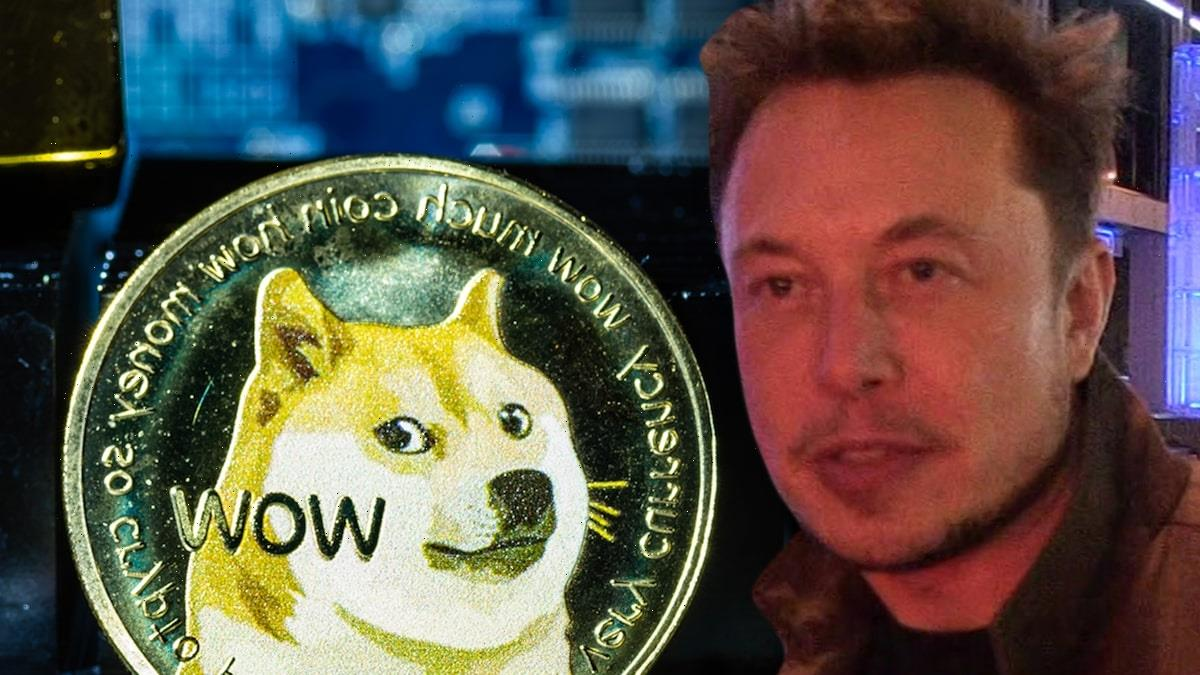 Dogecoin Value Tanks During Elon Musk's 'SNL' Hosting Gig