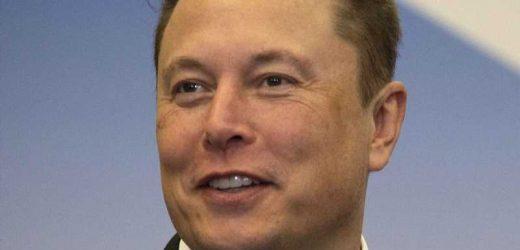 Inside Warren Buffett's Relationship With Elon Musk