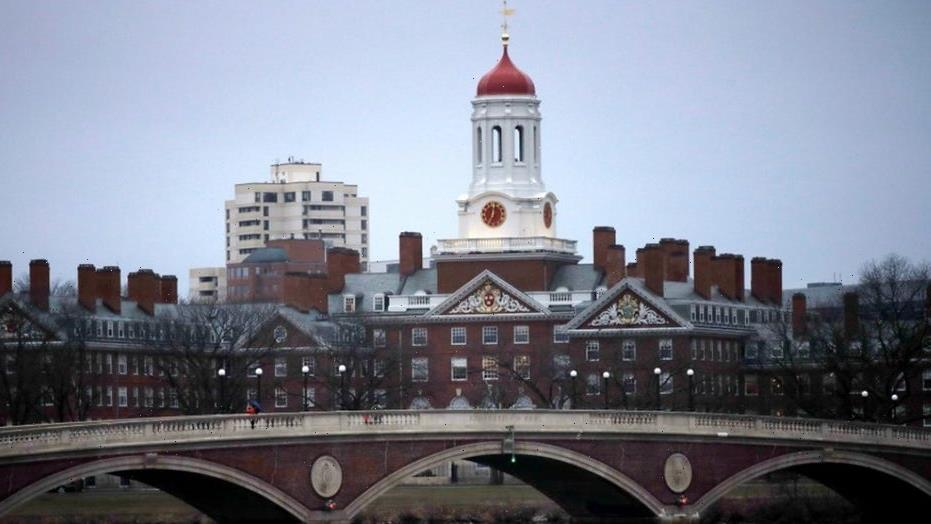 Teen's Harvard admission essay about losing a parent to cancer goes viral