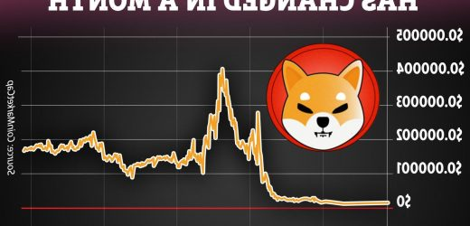 What is Shiba Inu coin? Investors warned about new cryptocurrencies