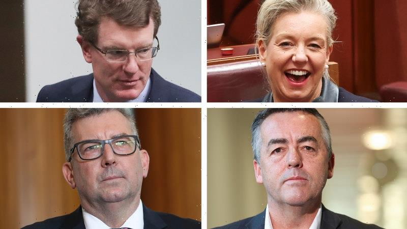 'I've landed on a snake': Nationals reshuffle fails to heal old wounds